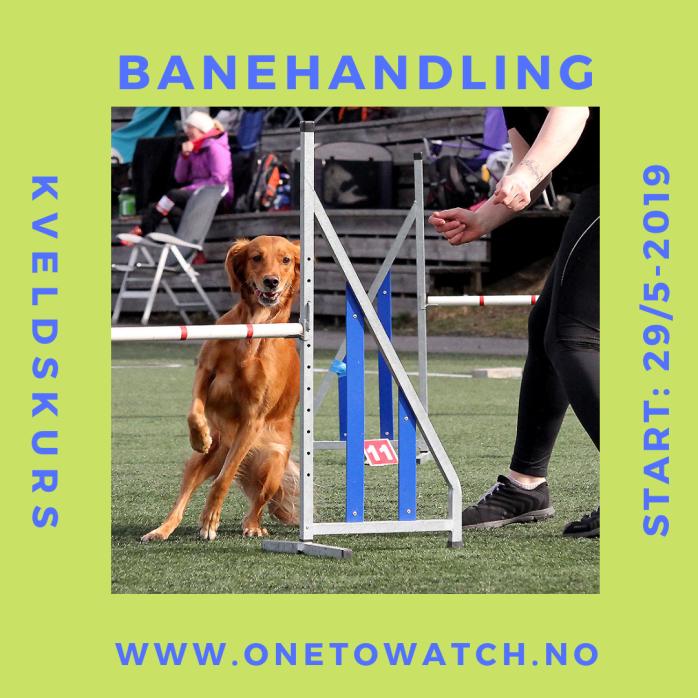 Banehandling