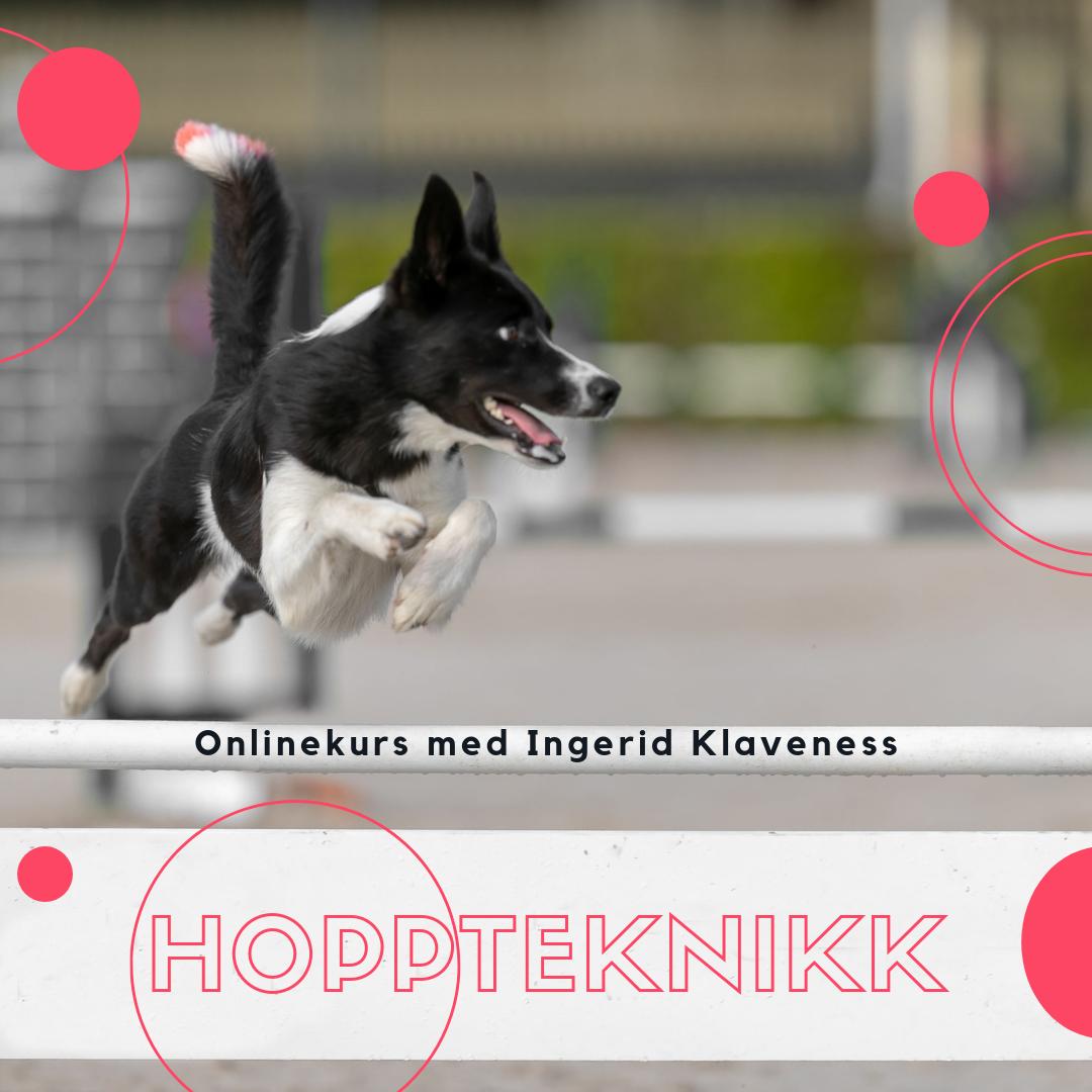 Hoppteknikk Online